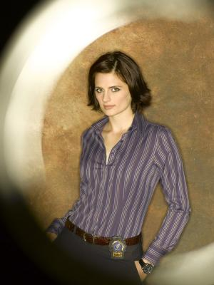 Castle 022 Stana Katic