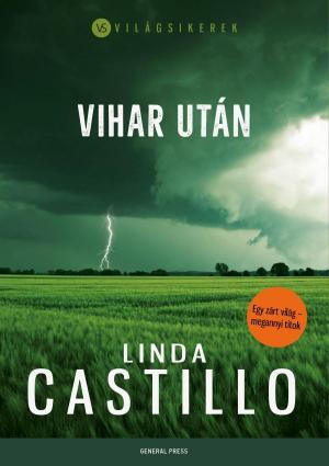 Linda Castillo: Vihar után